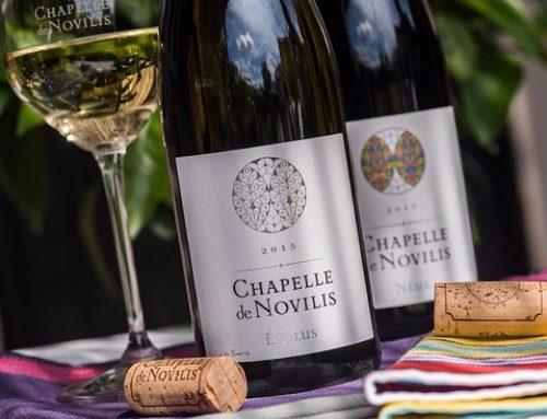 Chapelle de Novilis, les vins bios «haute couture» de Nathalie Jeannot.